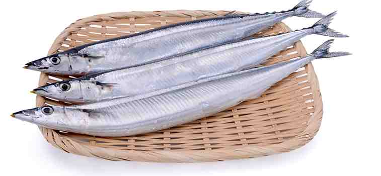 オメガ3脂肪酸 DHA さんま 秋刀魚